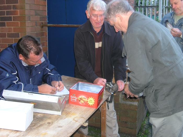 Kings Heath Pigeon Club, marking the pigeons for a race