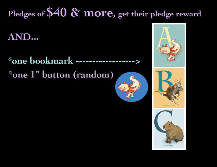 "Pledges of $40+ (not including shipping), get a FREE bookmark & one 1"" button"