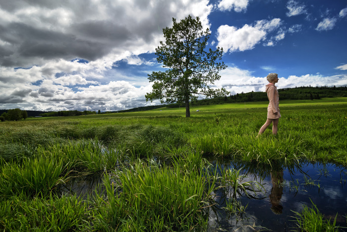 """""""All Quiet in the Meadow"""" with Morgan Ray Kean"""