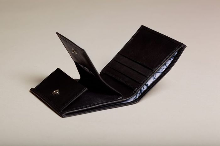 Wallet collection 46° 00 N 9° 00 E