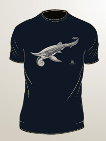 Helicoprion: ivory ink on navy t-shirt (available in mens/unisex sizes S, M, L, XL, 2XL, 3XL)