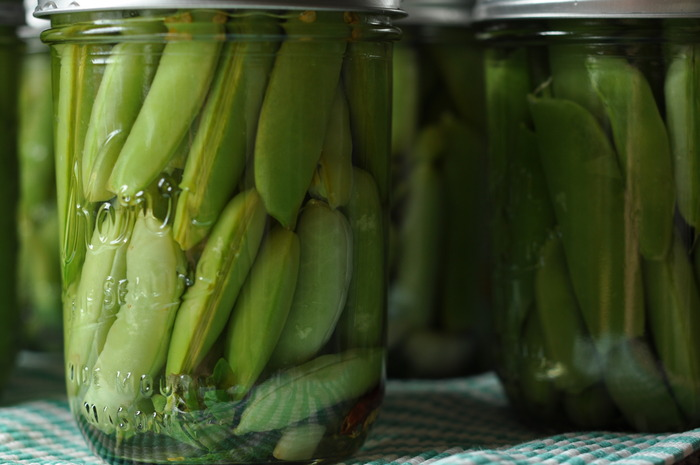 Snap Pea Pickles