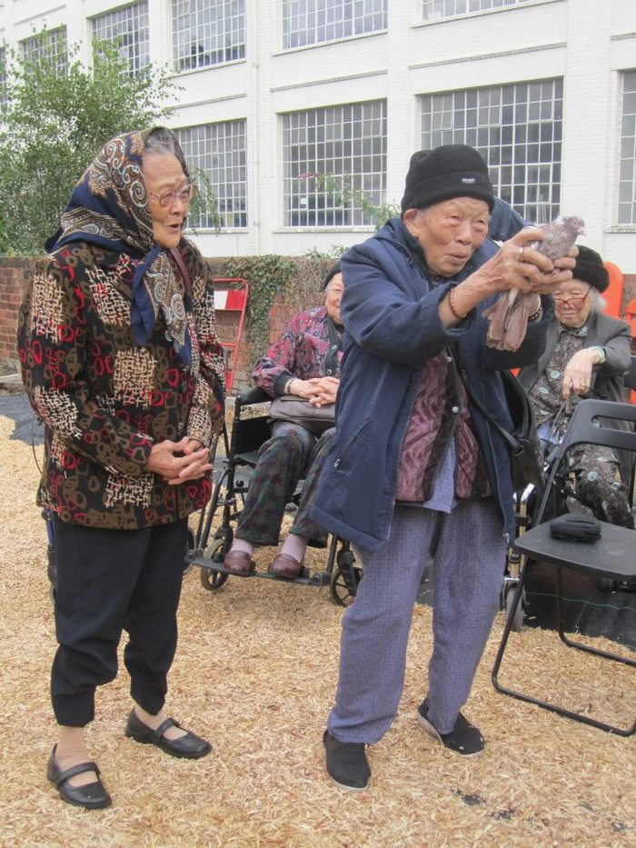 Elders from the local Chinese Community Centre visiting Project Pigeon's loft