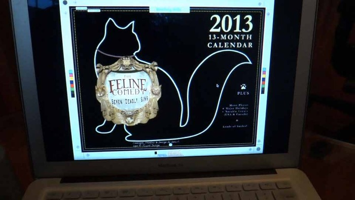 Seven Deadly Sins of a Cat 2013 CALENDAR