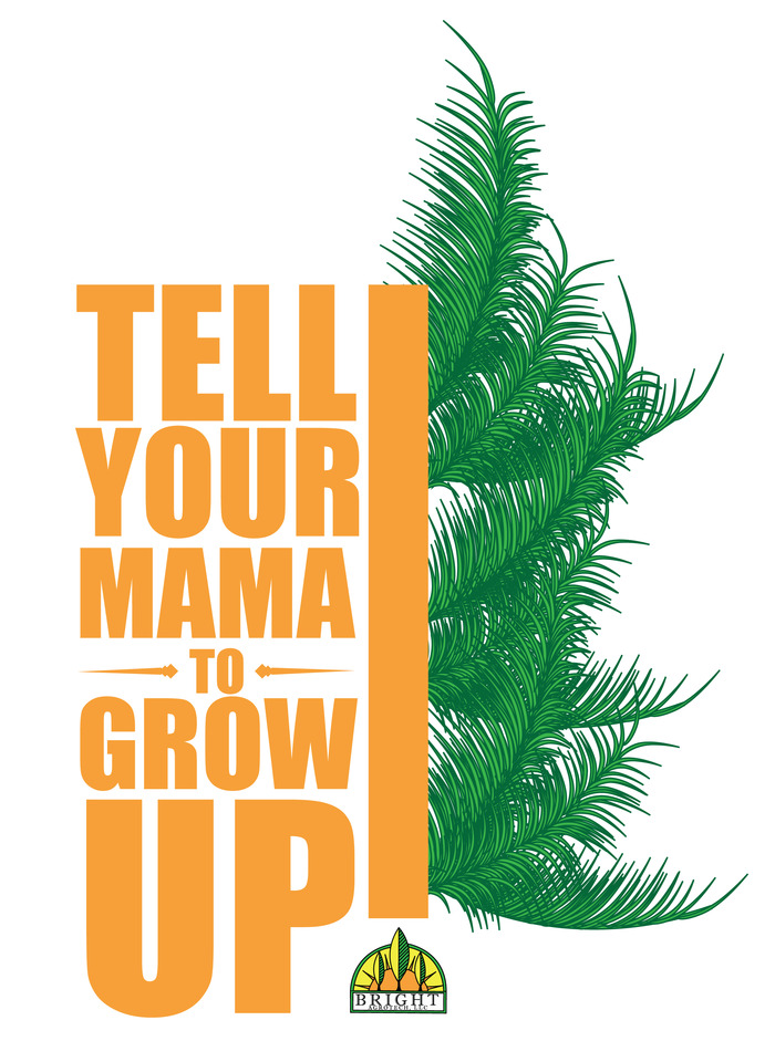 T-shirt/Decal option #1: Your Mama