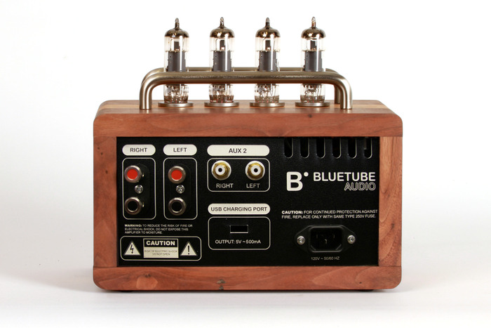BlueTube Amplifier Back (Just as gorgeous as the front)