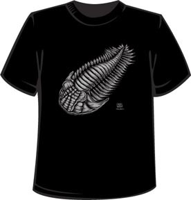 Trilobita: light gray ink on black t-shirt (KIDS SIZES 2/4/6 AND BABY SIZES 3-6mo/6-12mo/12-18mo/18-24mo)