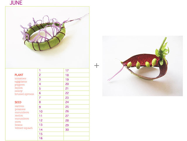 "Planting Calendar + 8"" x 10"" Purple Podded Pea No. 4"