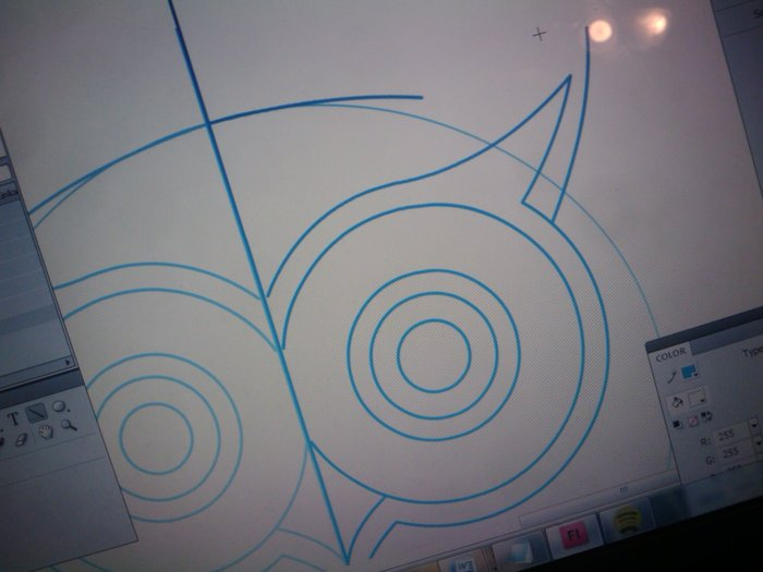 Illustrating the owl!