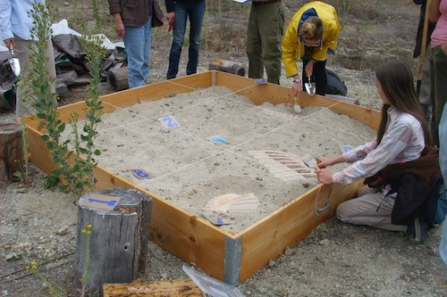 Mystery Fossil Dig