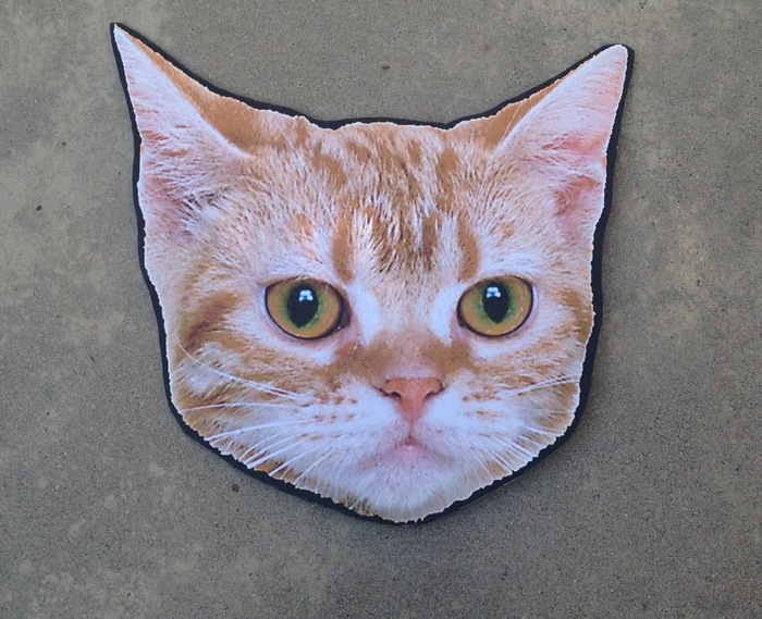Cat Head from 2012 Tour