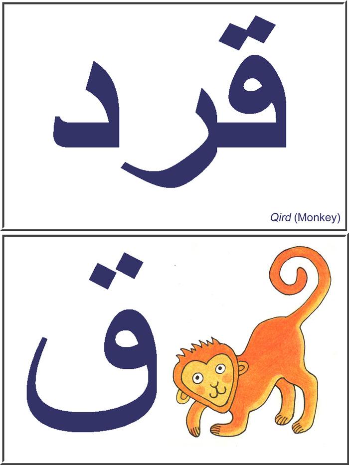 Qird (Monkey)
