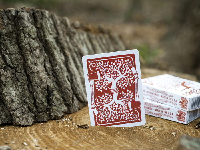 "Mock-up of the back of the cards. Caption on axe handle reads ""Save a tree. Eat a Beaver."""