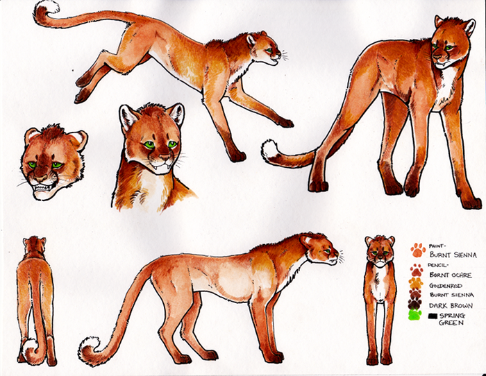 Character reference sheet for Thakur