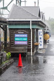Umbrellas in Hakone