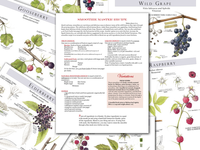 Plant Identification pages and Sample Recipe Template