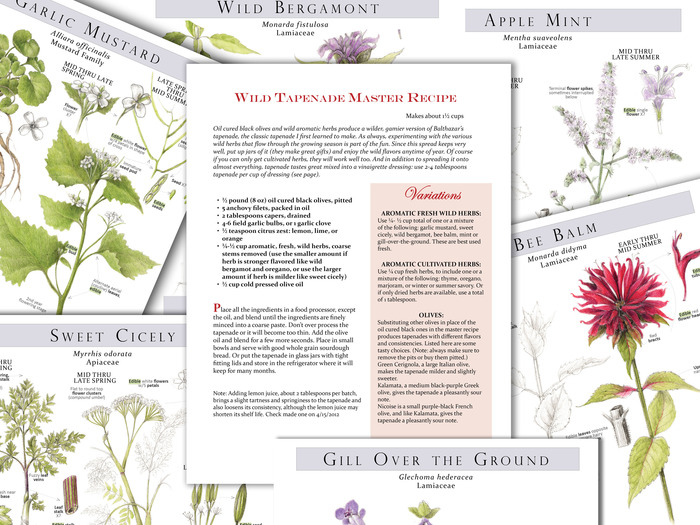 Plant Identification pages with Sample Recipe Template