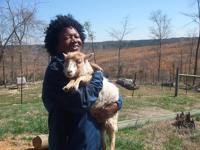 Me and Gretel the Shetland lamb
