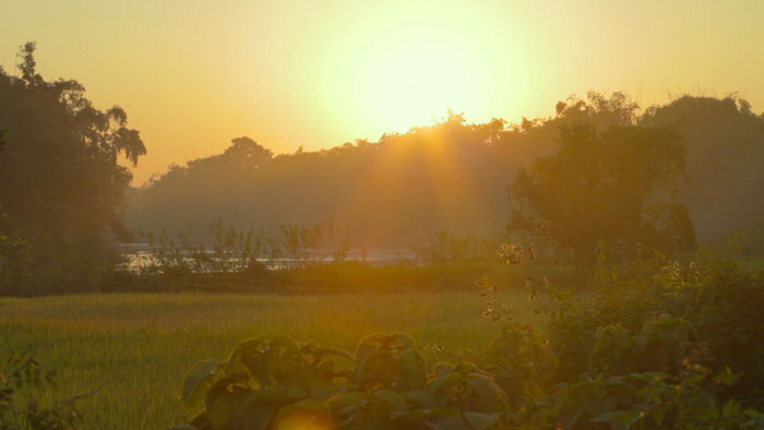 Sunset on Majuli Island