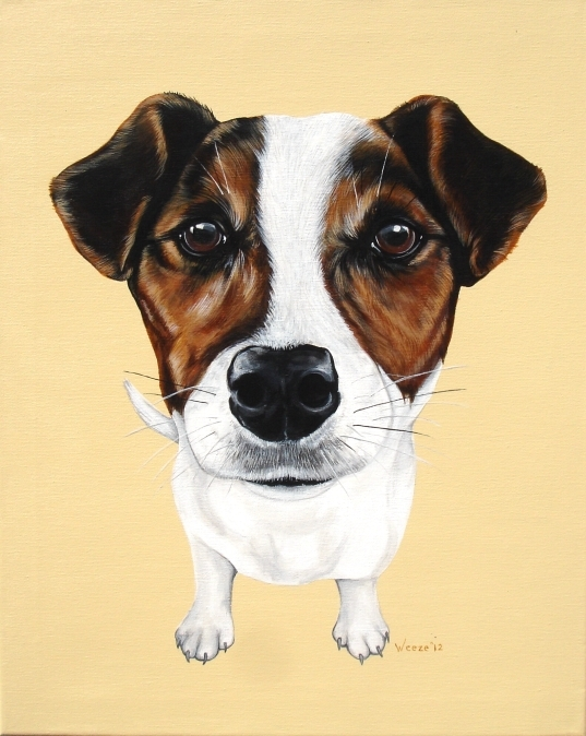 "Zoom, eager little jack russell terrier is painted with acrylics on a 16"" X 20"" canvas."