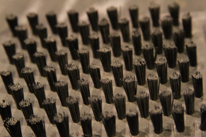 Close up of the Bristles
