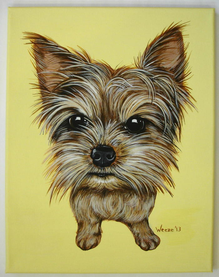 "Brutus the yorkshire terrier is all attitude and hair!  Painted on a 11"" X 14"" canvas with acrylics."