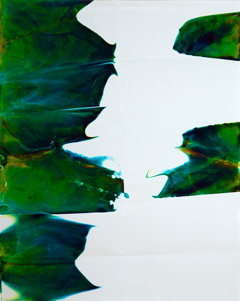 "Untitled, 20""x16"" Chromogenic Print, 2012."