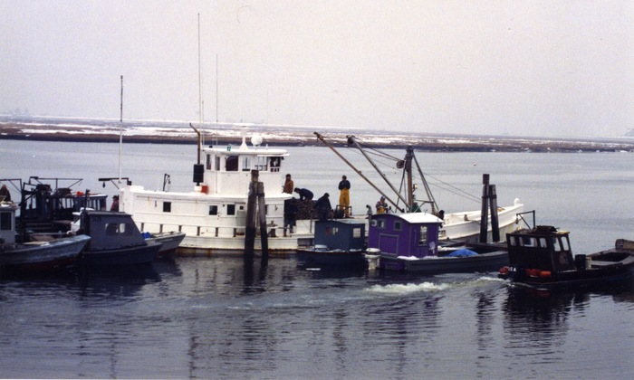 Laurel buying seed oysters from small skiffs in the Housatonic River, Stratford, CT. Seed purchases are best during the coldest months of the year.