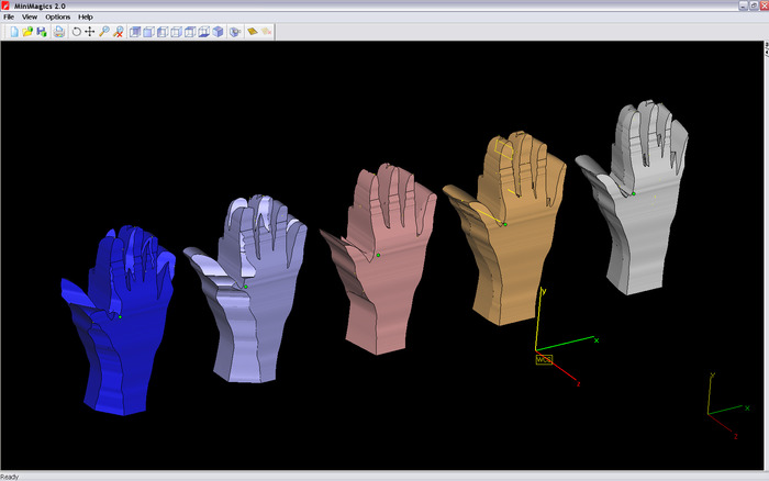 The five 3D models