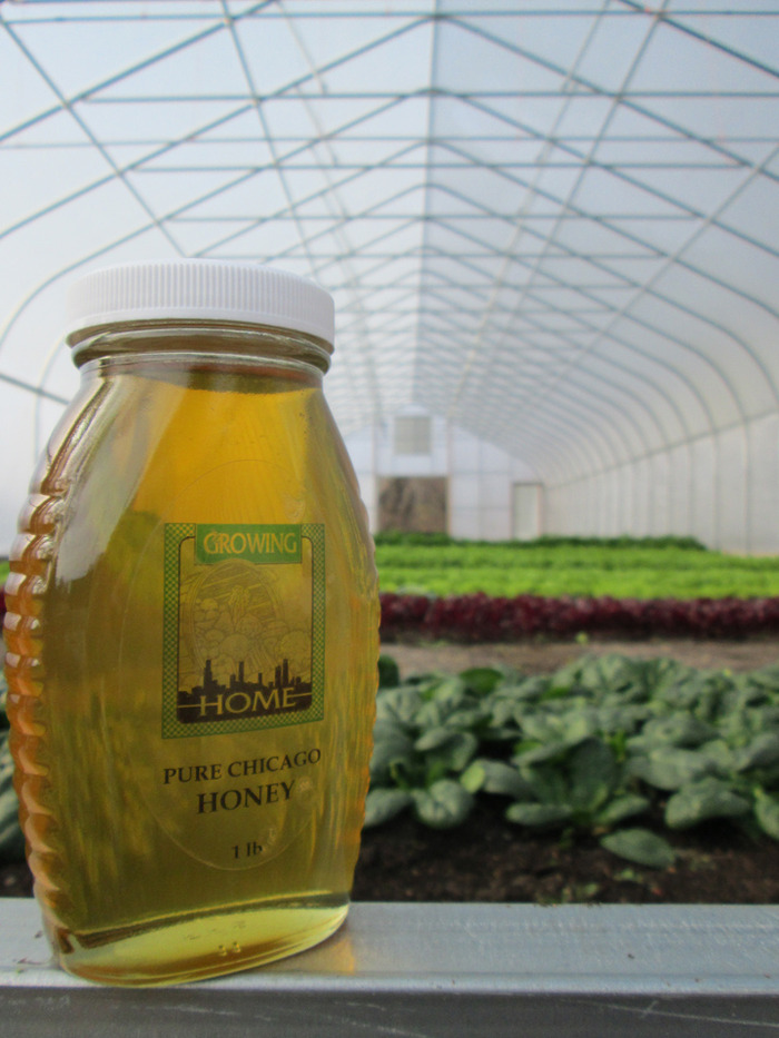 $250 - Honey from Growing Home's hives at Su Casa Market Garden