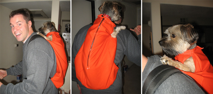 First home-made K9 Sport Sack
