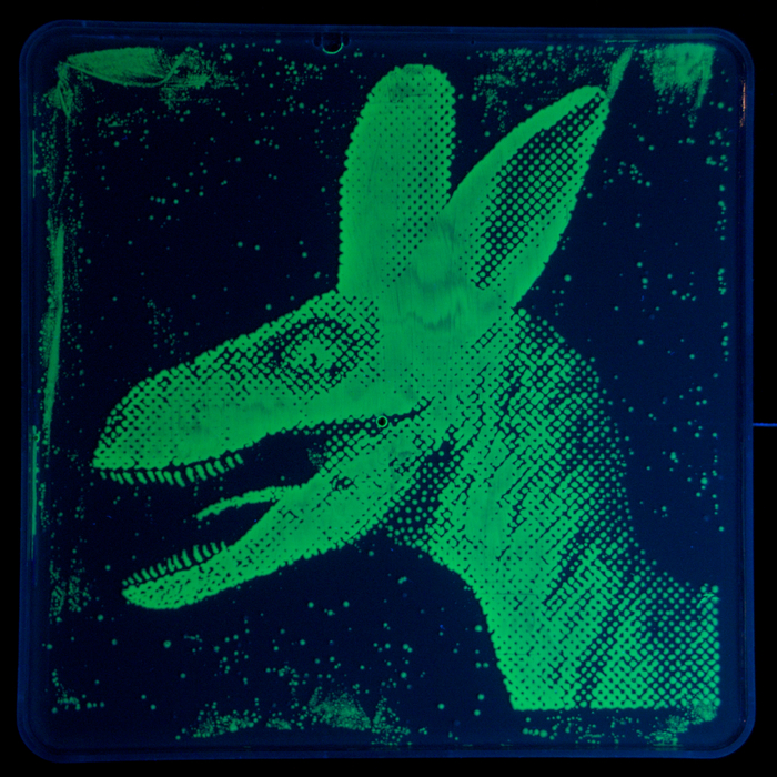 Albasaurus: The world's First DayGlo Veleocirabbit