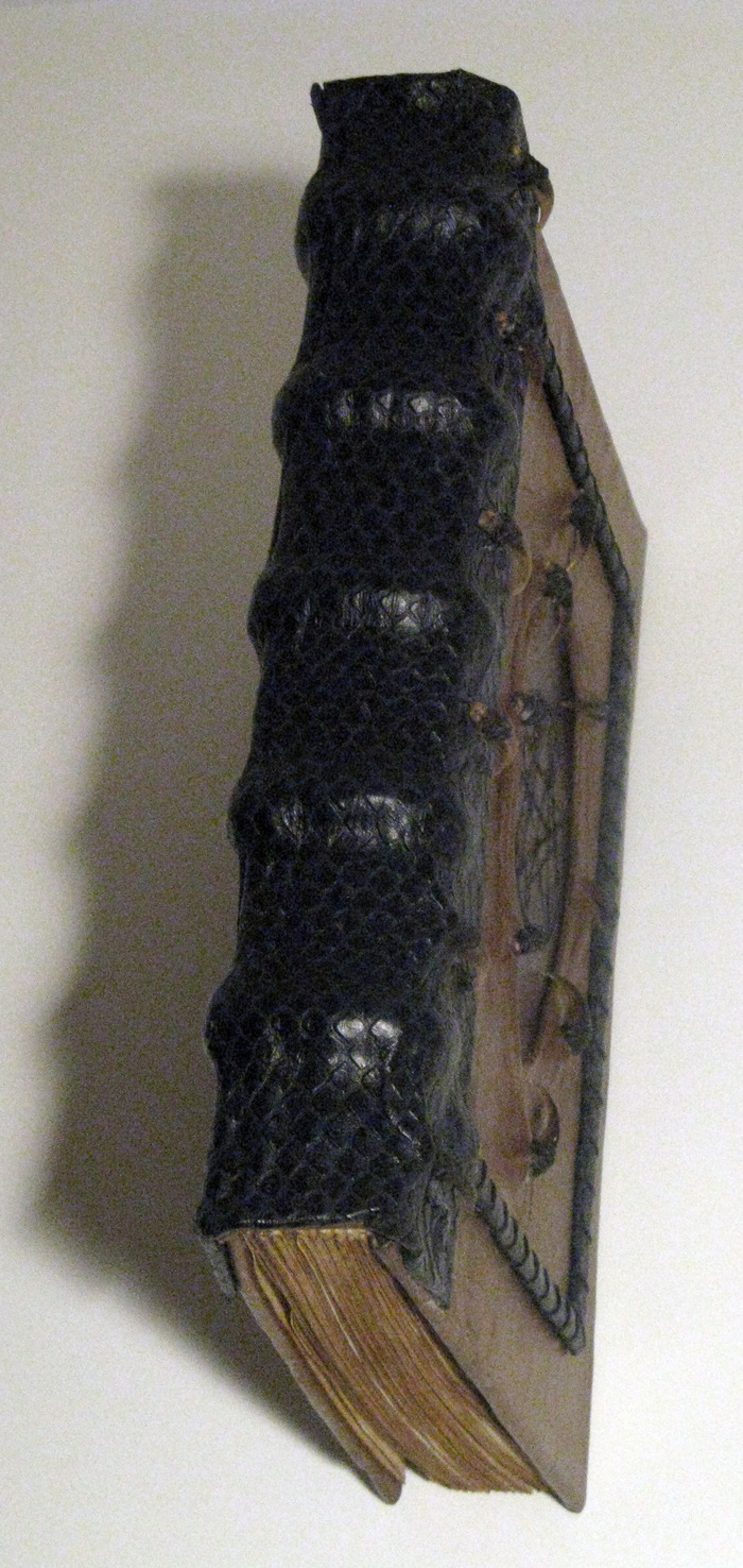 Necronomicon spine