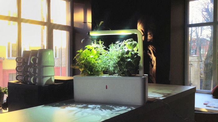 Smart Herb Garden By Click Grow By Click Grow