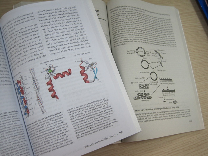 Color figures in the translated Molecular Cell Biology (left) make a much better illustration than the black-and-white figures in other Vietnamese textbooks.