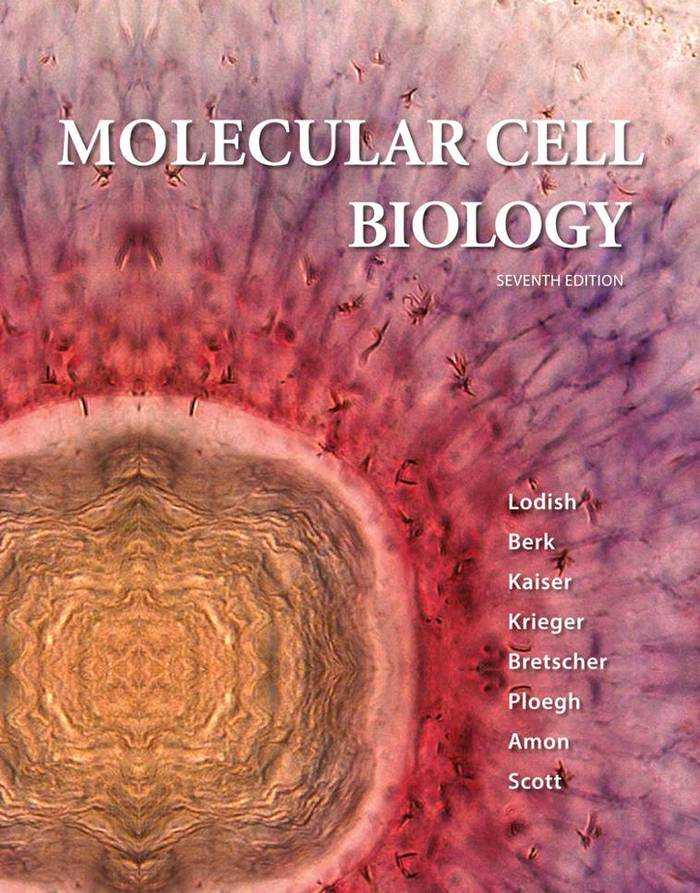Cover of Molecular Cell Biology 7th edition
