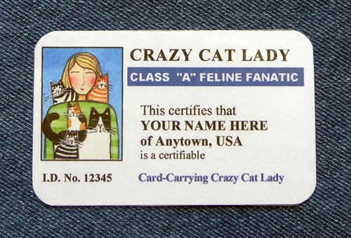 PERSONALIZED I.D. CARD: Customized with your own name, location and hair color (or that of a friend)