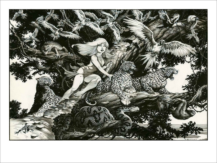 """Beyond the Known Forest, She Talks with Birds"" signed print. Currently being colored. The title will appear under the art. We'll update once it is ready!"