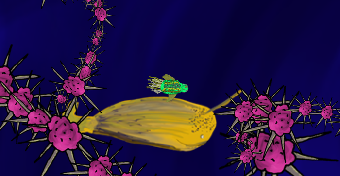 Turtlefish Racing a Narwhal!