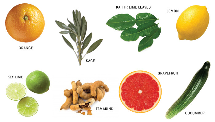 Fresh ingredients used to flavor bitters (examples)