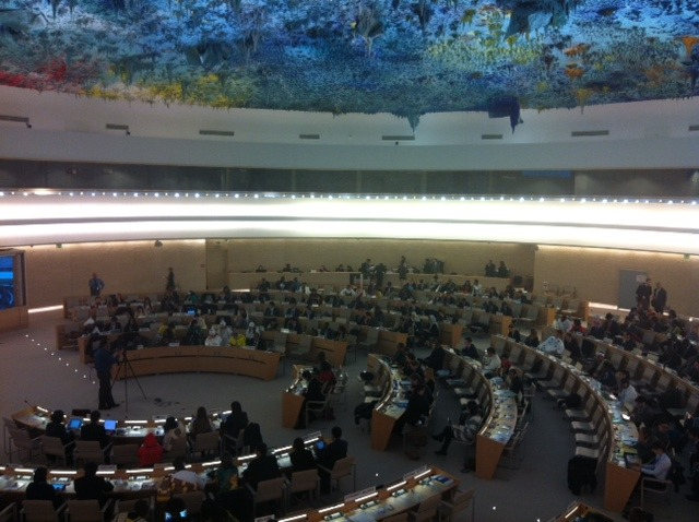 The United Nations Human Rights Council 2013