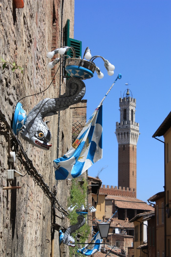 photo: Contrada dell'Onda | Siena, Italy