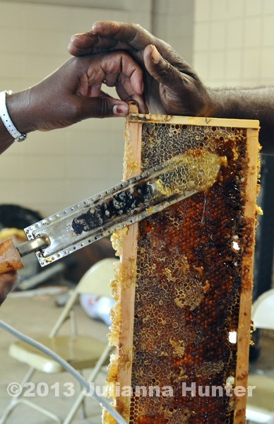Learning how to cut the caps off of honey comb getting it ready to extract the honey. This is an image from the ASAN project.