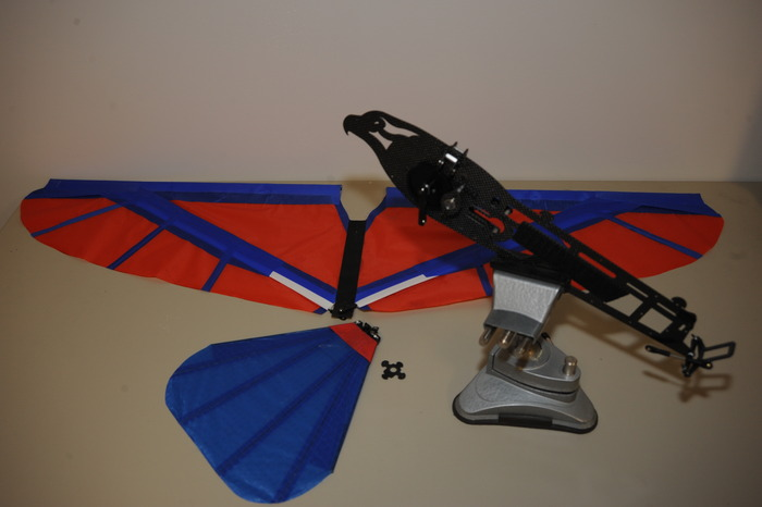 Frame, Wings and Tail (Spars and Wing-Frame Joint included)
