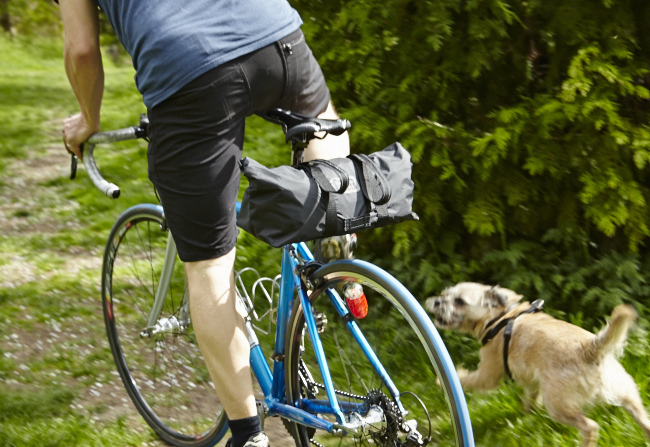 No Sway! even if your dog doesn't approve of cycling and you need to get away...