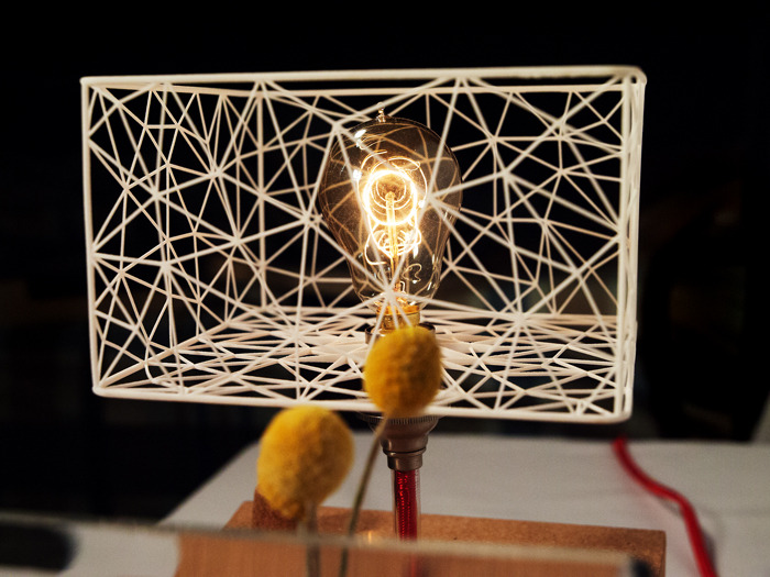 includes 3D printed lampshade, edison-style bulb, cork-knob dimmer switch, 6ft. cord, glass tank, and three dried flowers.