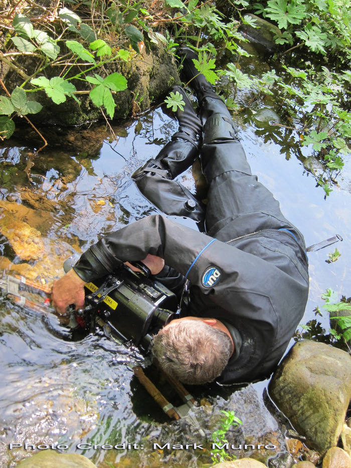 Lance Milbrand shooting newt eggs along a creek within the Santa Cruz Mountains.  The shot below shows the exact image captured while this photo was taken. Photo Credit: Mark Munro
