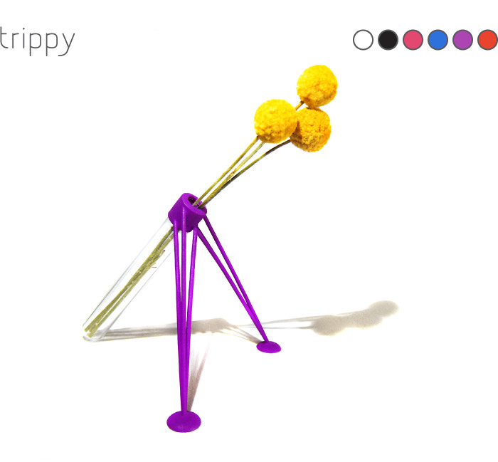 Trippy Flower Vase: 3D printed 'legs' accept the threaded glass tube. Includes 3 dried 'billy ball' flowers.