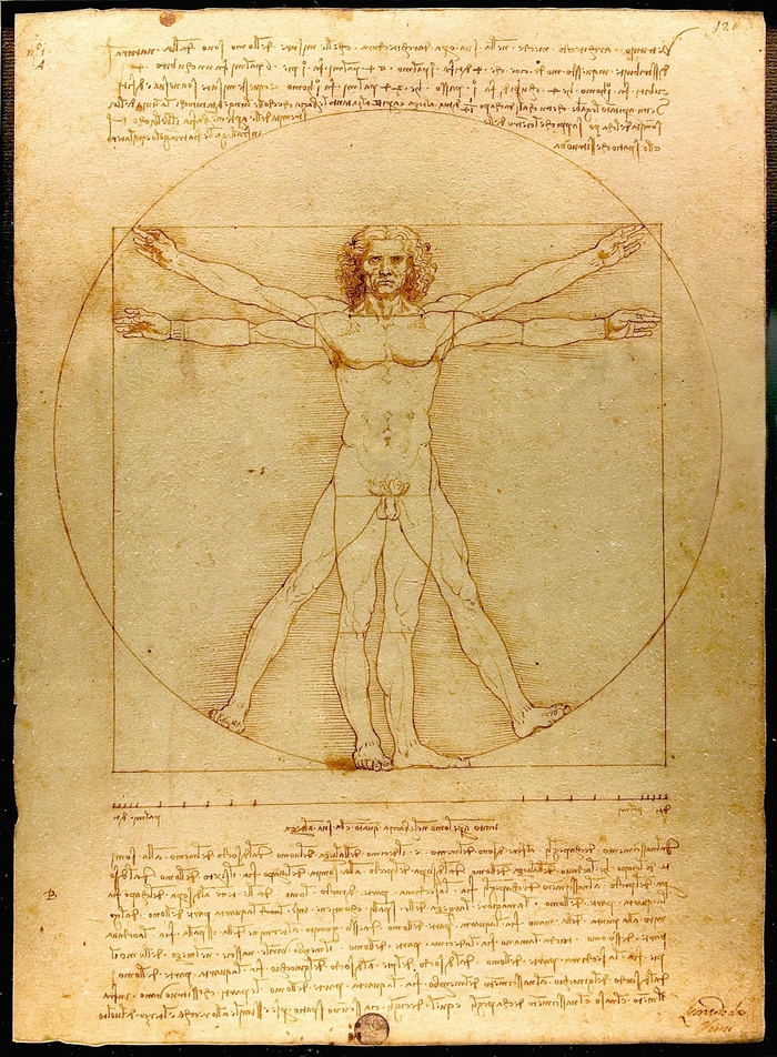 Original Vitruvian Man