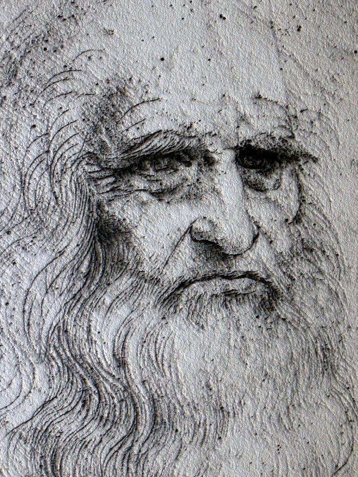 Leonardo's Self Portrait